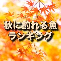 秋の釣りで釣れる魚・対象魚!9月・10月・11月の人気魚種ランキング!